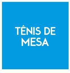RAQUETE DE TENIS DE MESA